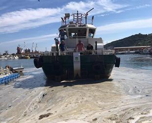 Marmara'da müsilaj temizleme çalışmaları devam ediyor