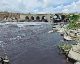 Ergene Deresi'ni kirleten 5 fabrika kapatıldı