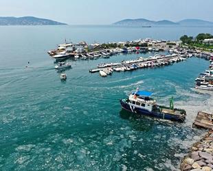 Marmara'nın kabusu müsilajlı su, oksijeni tüketiyor