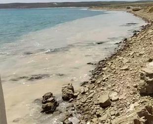 Yunanistan, Ege'de görülen deniz salyası için harekete geçti