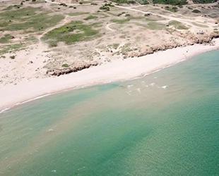 Şile Sahili'nde denizin rengi değişti