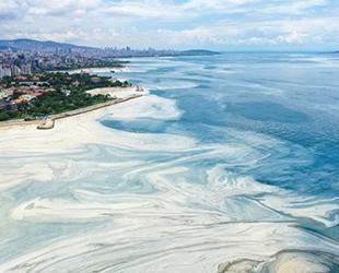 'Marmara Denizi'nde Çevresel Tehditler ve Deniz Kirliliği Çalıştayı' düzenlendi
