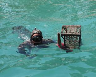 Bodrum'da dalgıçlar, deniz dibi temizliği yaptı