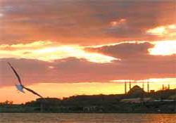İstanbul'un Havası Artık Temiz!
