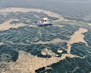 İzmit Körfezi'nde çevreyi kirleten 20 tesise 2.9 milyon TL ceza kesildi