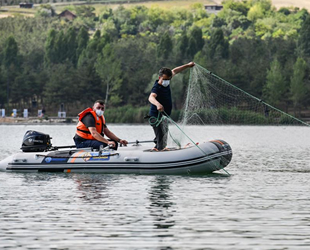 Ankara'nın ekonomik balık türleri tespit edilecek