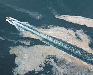 Marmara Denizi'nin güneyinde bir ayda 4 bin metreküp müsilaj toplandı