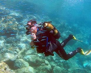 Saros'un akvaryumu dalış turizminin ilgi odağı oldu