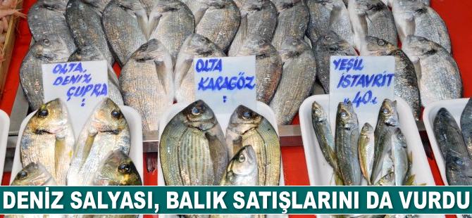 Müsilaj, balık satışlarını da etkiledi