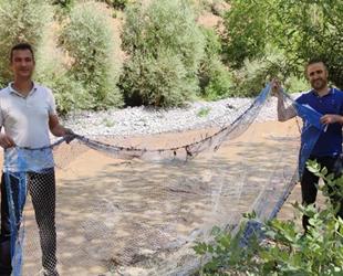 Van'da kaçak avlanılan sıraz balıklarına el konuldu