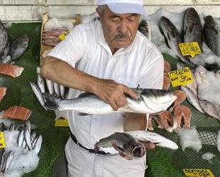 Kıyılarda yavru balık bolluğu yaşanıyor