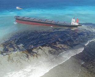 IMO, deniz kirliliğine karşı 10 yıllık eylem planını açıkladı