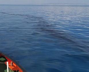 Akdeniz'deki petrol sızıntısı, KKTC kıyılarından uzaklaştı