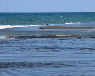 Petrol sızıntısı, Hataylı balıkçıları endişelendiriyor