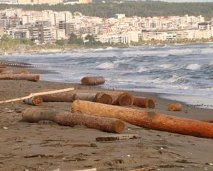Ayancık'ta selin denize sürüklediği tomruklar Samsun sahillerine vurdu