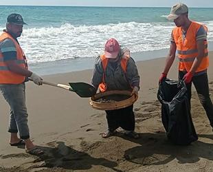 Samandağ sahilinde petrol atıkları elekle temizleniyor