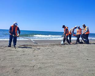 Hatay sahilleri petrol sızıntısından temizleniyor