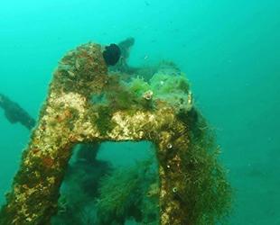 Mersin'de deniz dibi çalışmaları müsilaj tehlikesini ortaya çıkardı