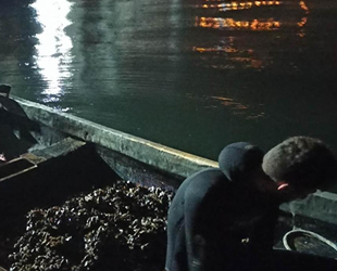 İzmit Körfezi'nde kaçak midye avcılarına geçit yok