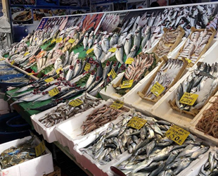 Balıkçı tezgahlarında bolluk yaşanıyor