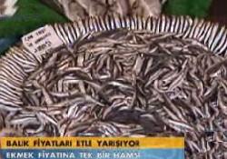 Balık fiyatları etle yarışıyor
