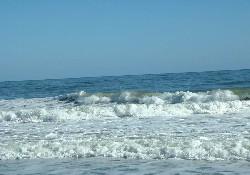 Okyanuslarda hayat bitiyor