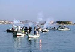 Balıkçılar termik santralı dava etti