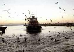 CHP balıkçıların sorunlarına el attı