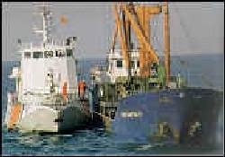 219 ton kaçak yakıt ele geçirildi