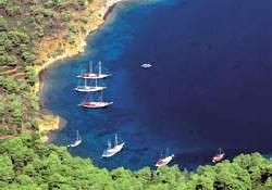Kıyı yapılaşmasına CHP'lilerden destek