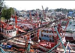 Tsunami Balıkçılığı Öldürdü