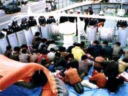Avrupa'da kaçak göçmen sıkıntısı