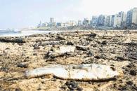 Başbakanlık'tan 'kirlilik' alarmı
