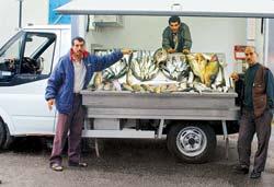 Balık satışına AB standardı