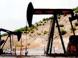 'Petrol tükenecek' korkuları yersizmiş!