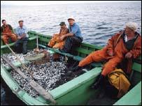'Avrupa az balık yemeli'