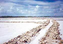 Tuz Gölü Kurtarılıyor...