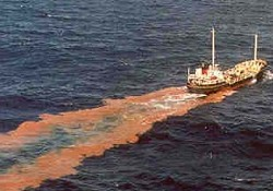 Körfezi kirleten gemilere ceza