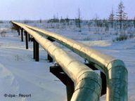 Baltık Denizi'nde boru hattı inşaatı
