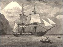 Darwin'in gemisi sanal alemde