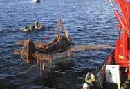 Alman Nazi uçağı denizden çıkarıldı