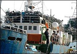 Fransa Kuzey Kore gemisini aradı