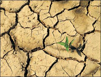 Türkiye kuraklıkla karşı karşıya