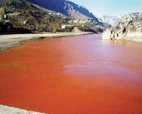 Fırat Nehri 'kızıl'a boyandı