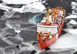 Bilim insanları bu yaz Arktikayı temizliyor