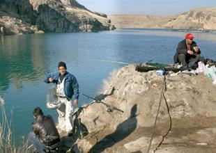 Sazan av yasakları 34 ilde sona eriyor