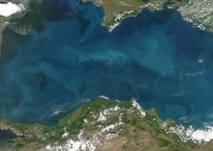 """Giresun Valiliğinden """"Karadeniz"""" çağrısı"""