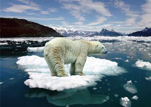 """""""Son 60 yılda sürekli bir küresel ısınma olduğu izlenimi"""" yaratıldı"""