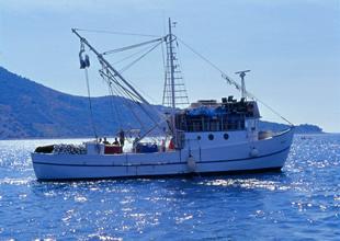 ÖTV'siz deniz akaryakıtı karaya aktı
