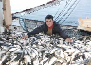 Balıklar yeni dünyaya, dolarlar Türkiye'ye
